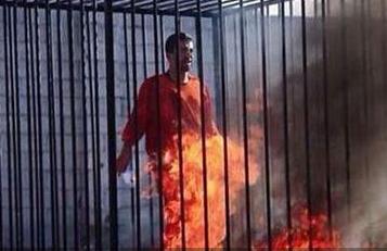 IS烧死约旦飞行员人质
